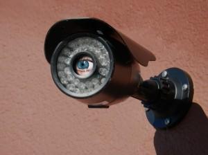 DSCN8580_ojo de vigilancia_recortado